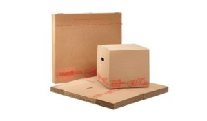 carry home medium self storage boxes image